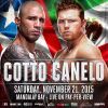 Miguel Cotto vs. Canelo Alvarez Fight Overview